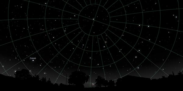 Image of the stars with a grid overlayed