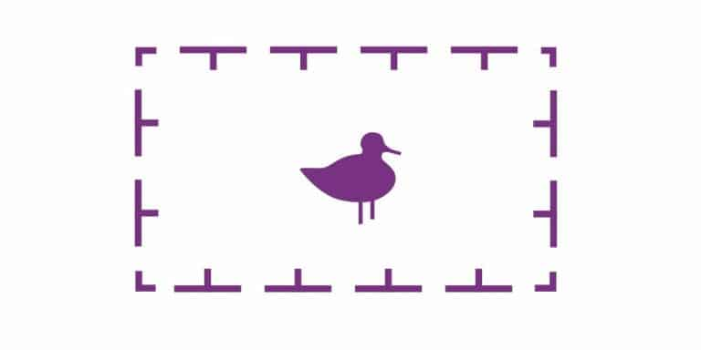 What Are Pink Ducks On Navionics & Can You Turn Them Off?
